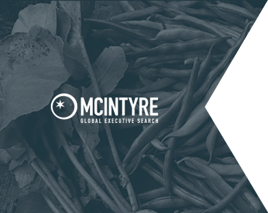 Case Study: McIntyre Global Executive Search Cult Marketing