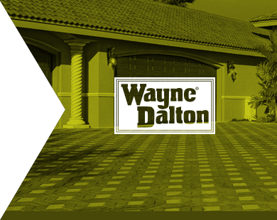 Work Wayne Dalton Cult Marketing
